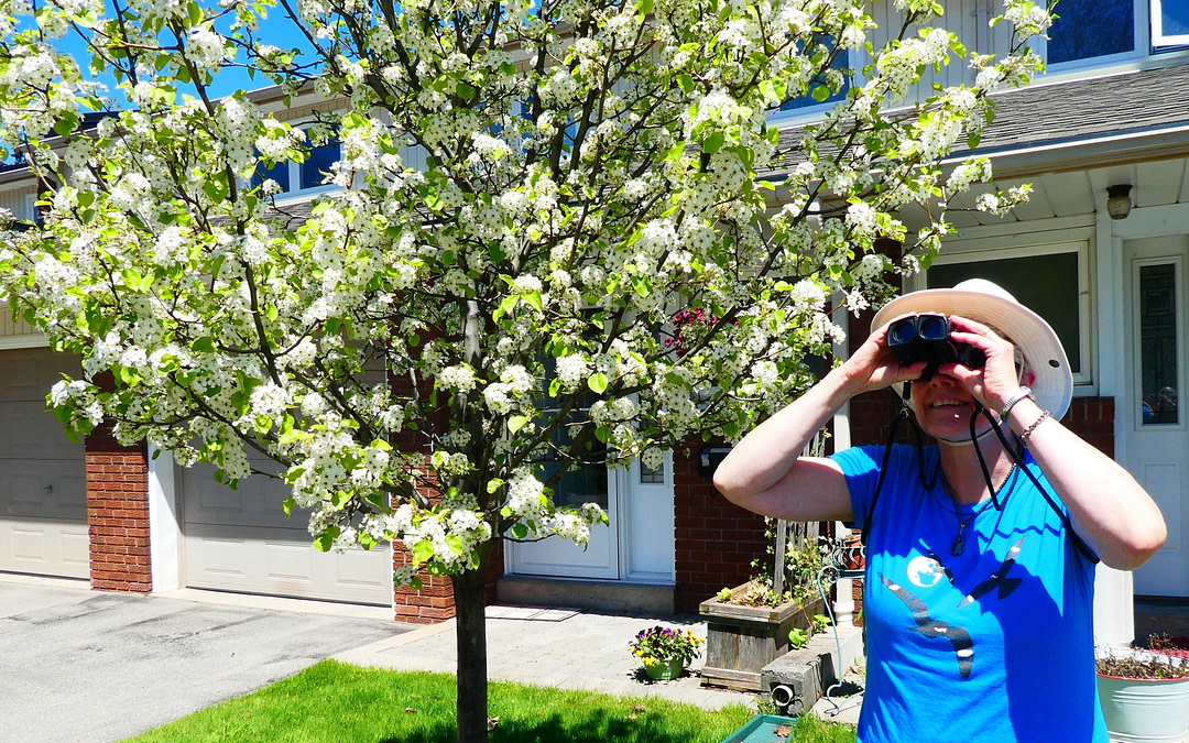 Creative birders keep support for conservation flowing