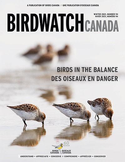BirdWatch Canada