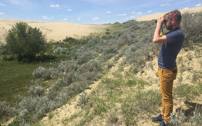 Saskatchewan Breeding Bird Atlas –  Avian Survey Technician