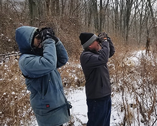 Why join the Christmas Bird Count? We've lost 1 in 4 birds since 1970
