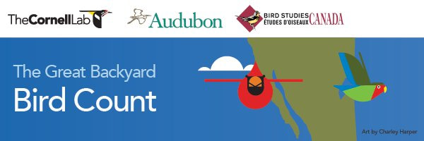Join a Global Bird Count!