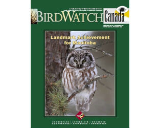 """Take a Break with the Latest Issue of """"BirdWatch Canada"""""""