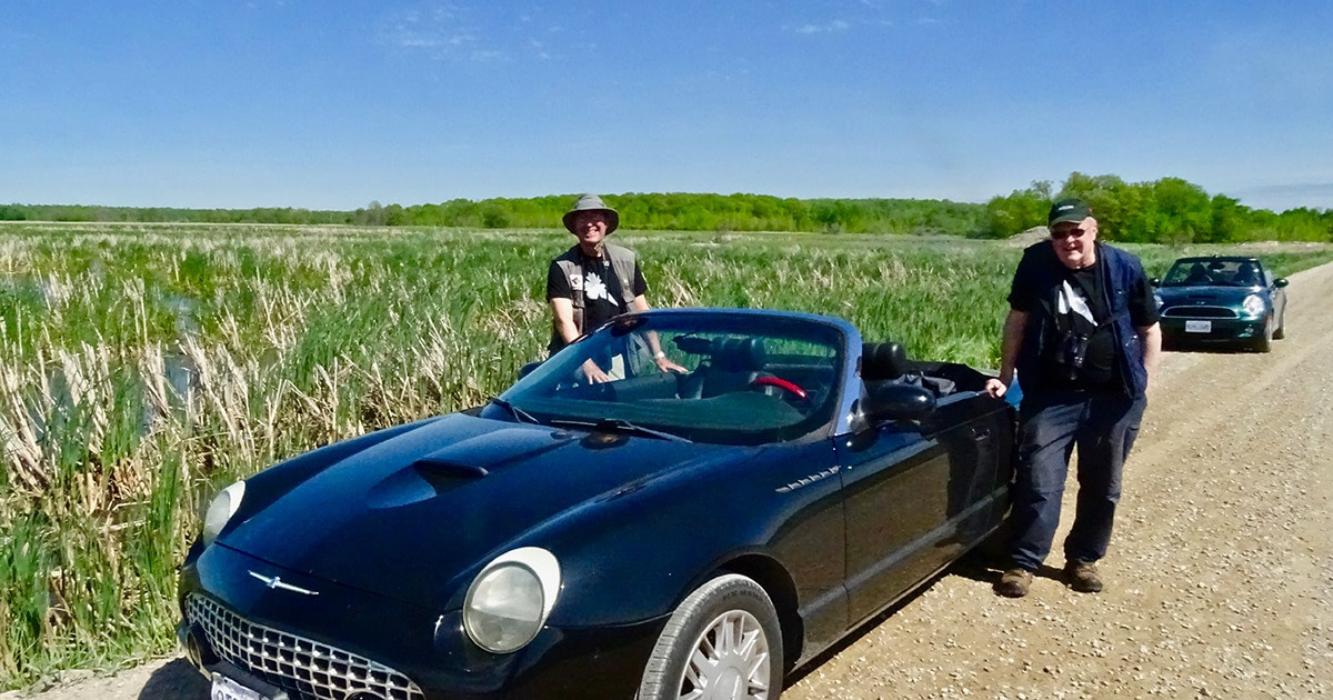 Two members of the Warbler Hunters stand beside their vehicles and are clearly enjoying their Birdathon day